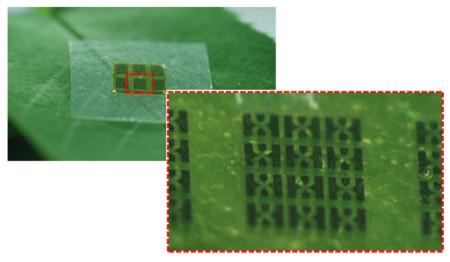 Este chip funciona y está fabricado con nanocelulosa
