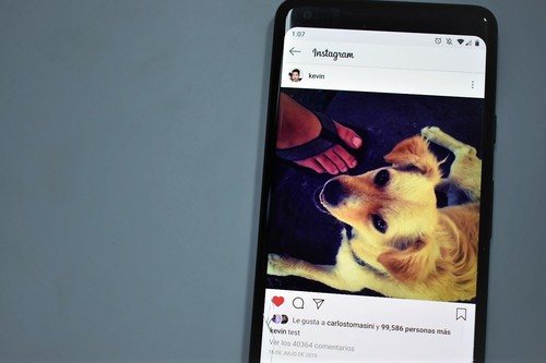 Un perro y un puesto de tacos en México, esta es la historia detrás de la primera foto de Instagram