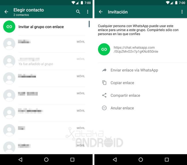 WhatApp Enlace Grupo