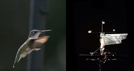 Este robot-colibrí usa la inteligencia artificial para llegar allí donde los drones no pueden