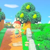 Aprovecha los árboles frutales de Animal Crossing: New Horizons, te contamos cómo hacerlo
