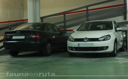 Volkswagen Golf aparcado
