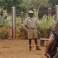'Jurassic World' no opta al Oscar pero este vídeo demuestra que sus efectos visuales son alucinantes