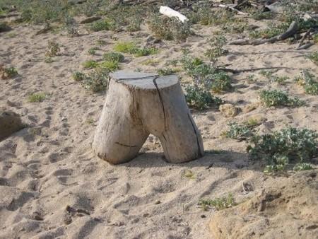 Escultura natural Playa