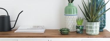 Ocho ideas de Maisons du Monde para decorar distintas estancias de la casa con plantas
