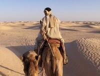 Viaje a Túnez: recomendaciones de la casa