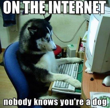 en-internet-nadie-sabe-que-eres-un-perro.jpg