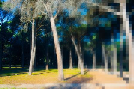 Cómo ajustar nuestra cámara si decidimos disparar en formato JPEG