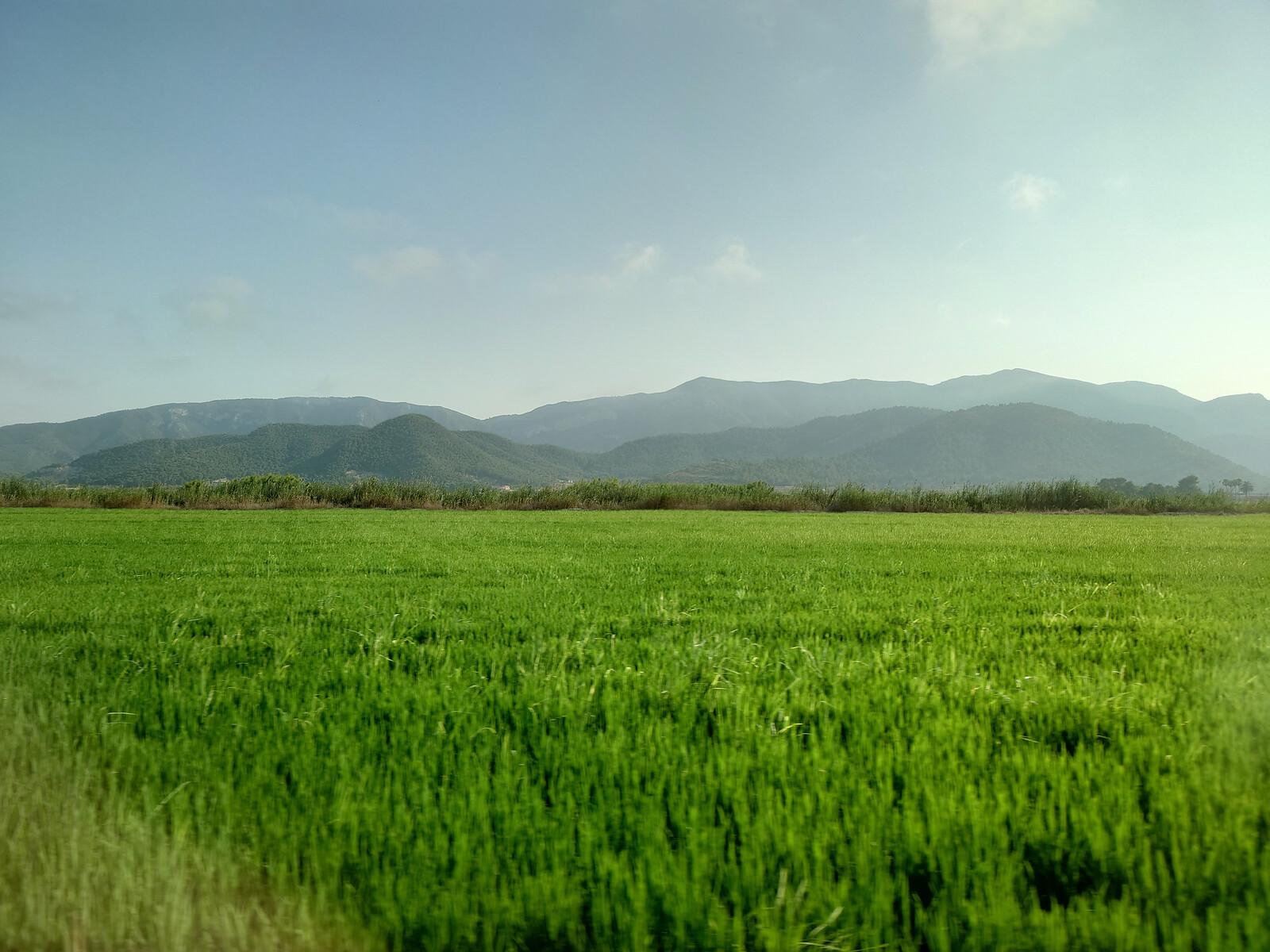 Foto de Sony Xperia 1 III, galería fotográfica (20/31)