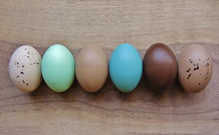 Huevos Pascua Natural