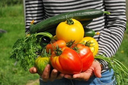 Tips Para Tener Alimentacion Sostenible Ecologica Ecologia Sustentable Planeta Agricultura Gastronomia