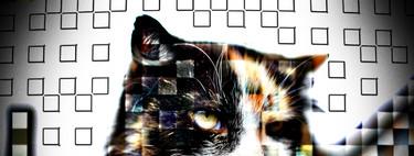 Cuando una imagen oculta más información de lo que parece: qué es y cómo funciona la esteganografía