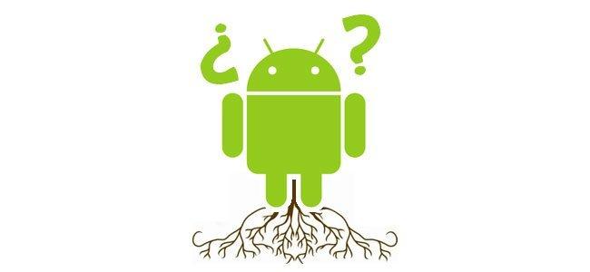 Root y preguntas