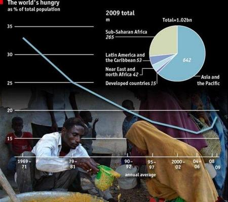 La volatilidad de los precios de la alimentación perjudica la hambruna
