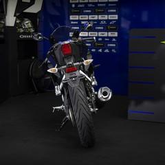 Foto 6 de 10 de la galería yamaha-yzf-r125-monster-energy-yamaha-motogp-2019 en Motorpasion Moto