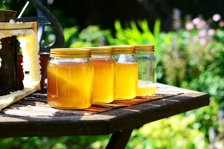 Miel orgánica: 7 beneficios que le aporta a tu salud