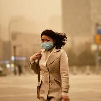 La contaminación no sólo te está haciendo vivir menos y peor. También te está haciendo más tonto