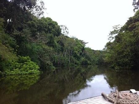 crucero amazonas peru