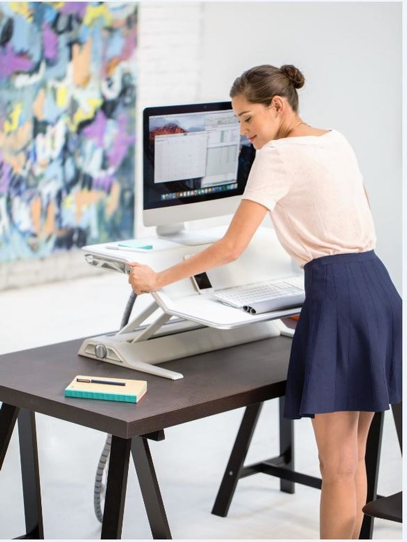 Lotus Sit-Stand Workstation