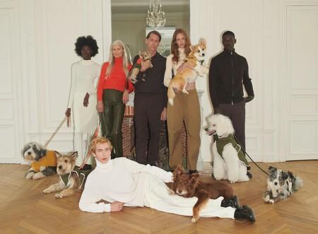 Zara podría convertir a tu mascota en la más estilosa del barrio: su nueva colección para perros llega con la intención de arrasar