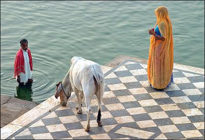 Guía para organizar vuestro primer viaje a India (I)