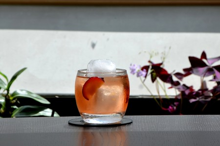 negroni-bitter-coctail