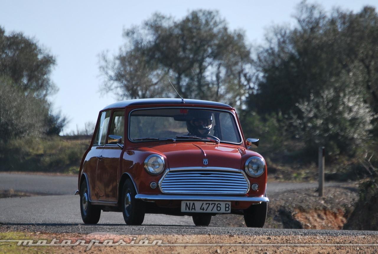 Foto de Authi Mini 850 L (prueba) (43/62)