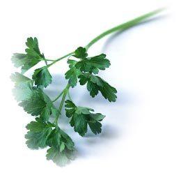 Un vinagre a las finas hierbas para tus ensaladas de verano