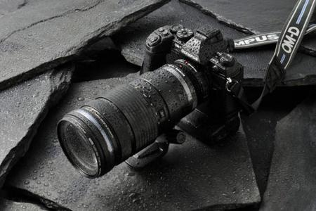 40-150f282-2.jpg