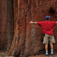 Truco exprés: incrementa el impacto de tus fotografías transmitiendo sensación de escala