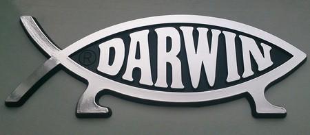 Darwin 778446 960 720