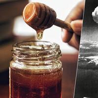 Gran parte de la miel de Estados Unidos tiene radiación. Es el legado de las pruebas atómicas de los '50
