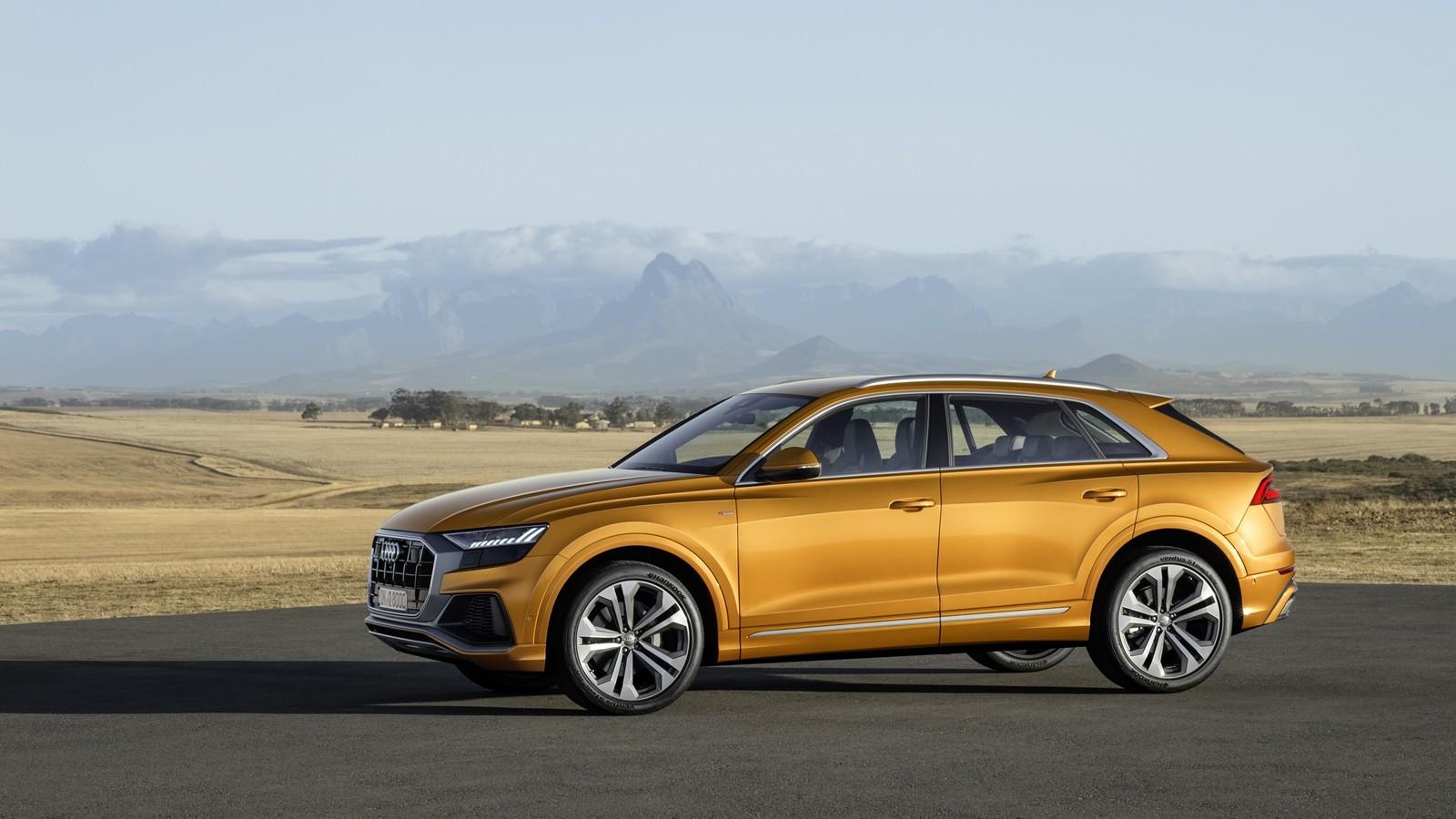 Foto de Audi Q8 2019 (25/33)
