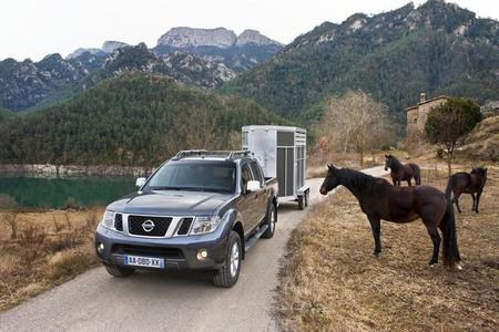 Motor y caballos