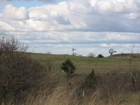 El lado más redneck o paleto de Estados Unidos, recorriendo la Ruta66 (II)