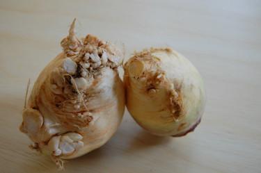 Vegetales feos en los supermercados británicos