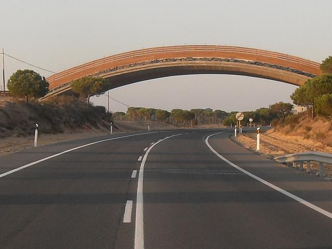 Carretera al sol