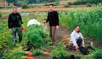 Alojamiento gratis en granjas ecológicas