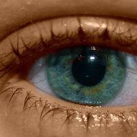 Qué sabemos de los filtros y gafas para reducir la luz azul que emiten las pantallas y evitar así daños en tus ojos