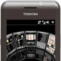 Toshiba TG02, mismo perro con distinto collar