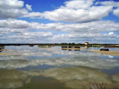 [Vídeo] 30 años de la Reserva de las Lagunas de Villafáfila