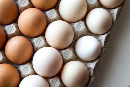 El huevo, cinco maneras de prepararlo. Infografía