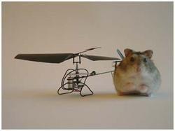 Construye un helicóptero del tamaño de un hamster