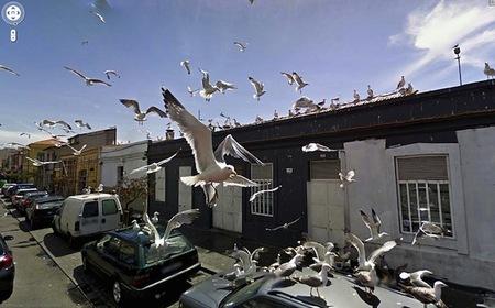 El extraño mundo a través de los ojos de Google Street View