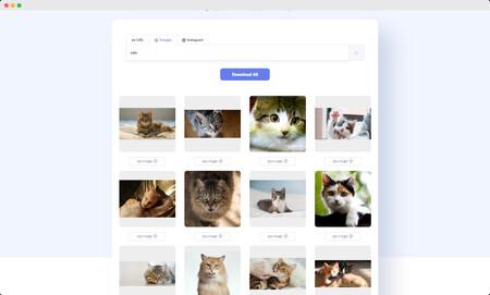 Descarga En Lote Desde Google Imagenes