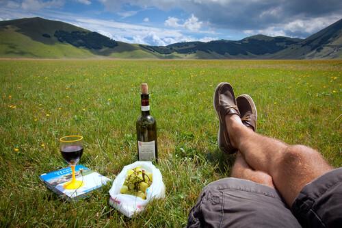 Compañeros de ruta: planeando las soñadas vacaciones de verano