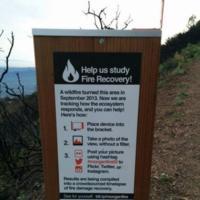 Cómo las redes sociales pueden ayudar a monitorizar los cambios medioambientales
