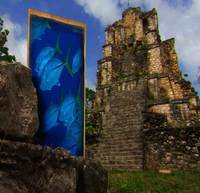 La Riviera Maya y los peligros del crecimiento descontrolado