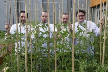 Curso de verano Huerta y Gastronomía. Cinco grandes chefs enseñan cocina verde