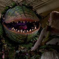 'La pequeña tienda de las horrores', el nuevo remake ya tiene director